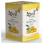 Ovil Kırma 101-140 KB Yeşil Zeytin Teneke 10 KG