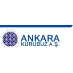 AnkaraKuruBuz