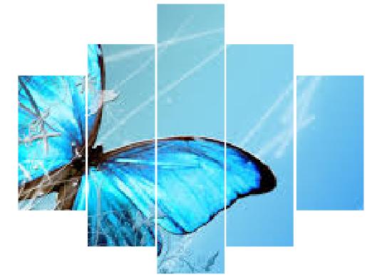 5 Parçalı Mavi Kelebek Tablo Dikey,150 X 80 Cm