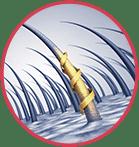 Hydrolyzed Keratin